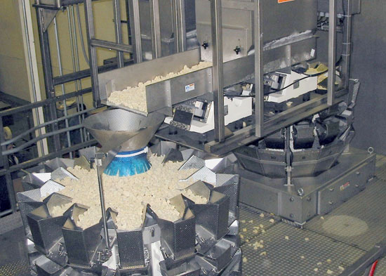 food grade bucket conveyor